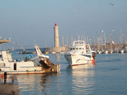 Return of the fishing boats, Sete